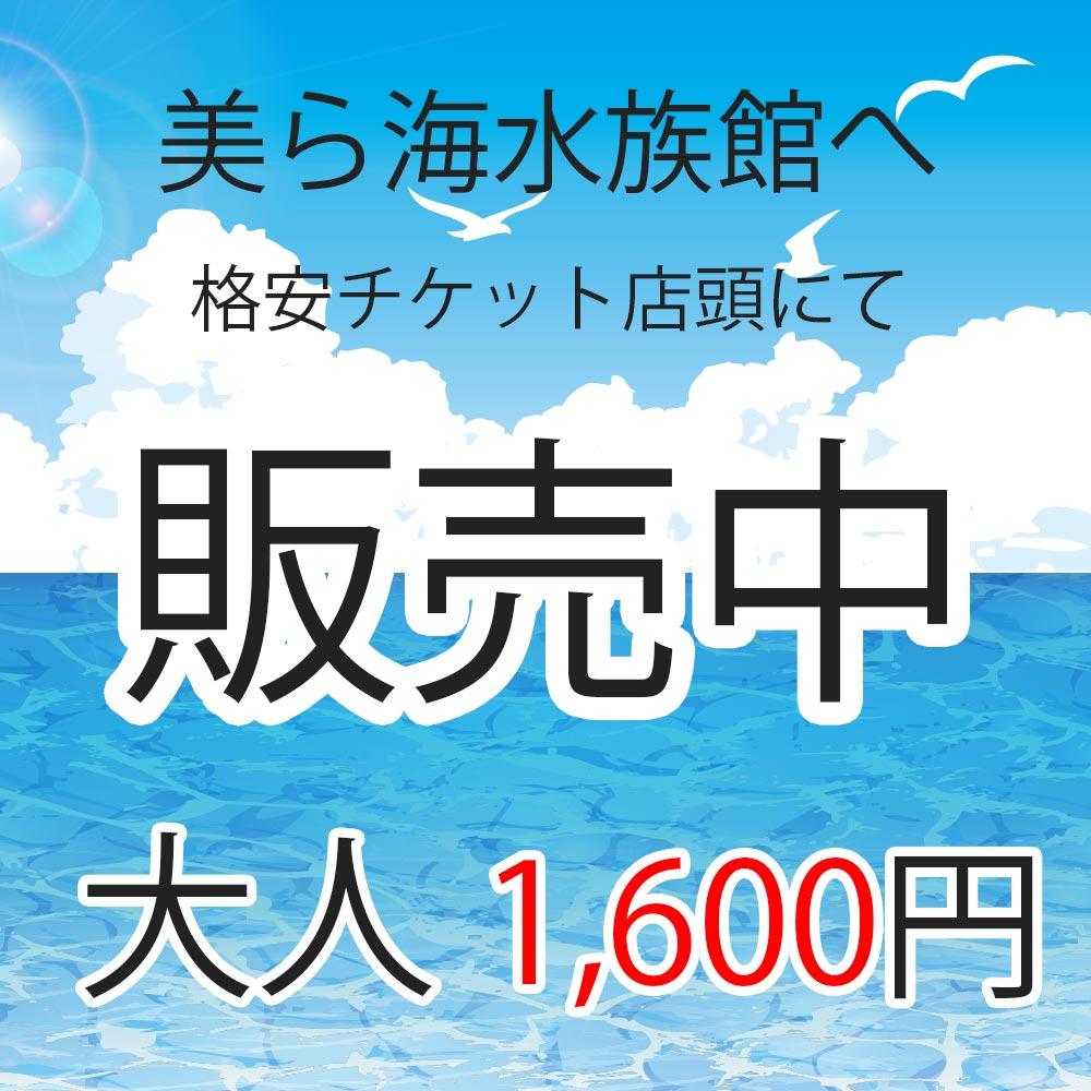 美ら海水族館、県内最安チケット